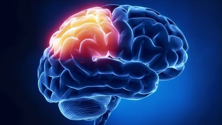 Living with an Undiagnosed Traumatic Brain Injury and Post Concussion Syndrome for over 20 years