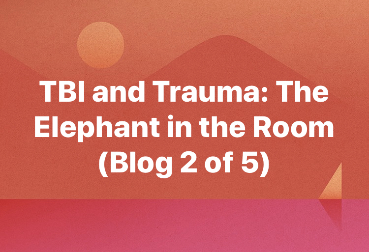 TBI and Trauma: The Elephant in the Room (Blog 2)